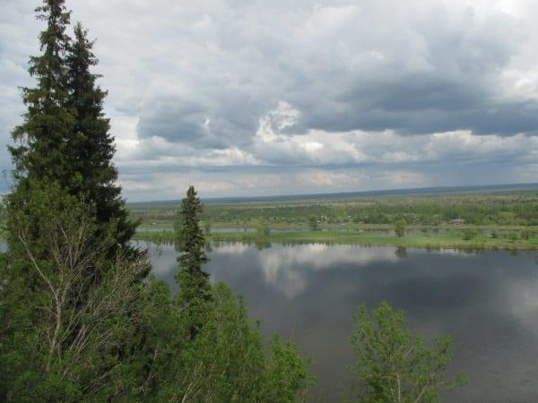 Фото реки Кама сквозь лес