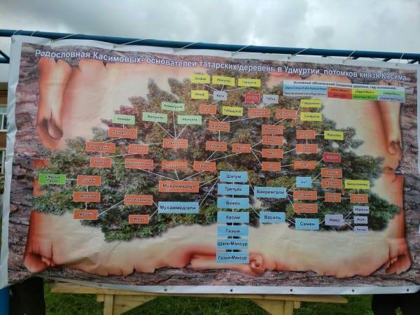 Фото банера с генеалогическим деревом рода Касимовых